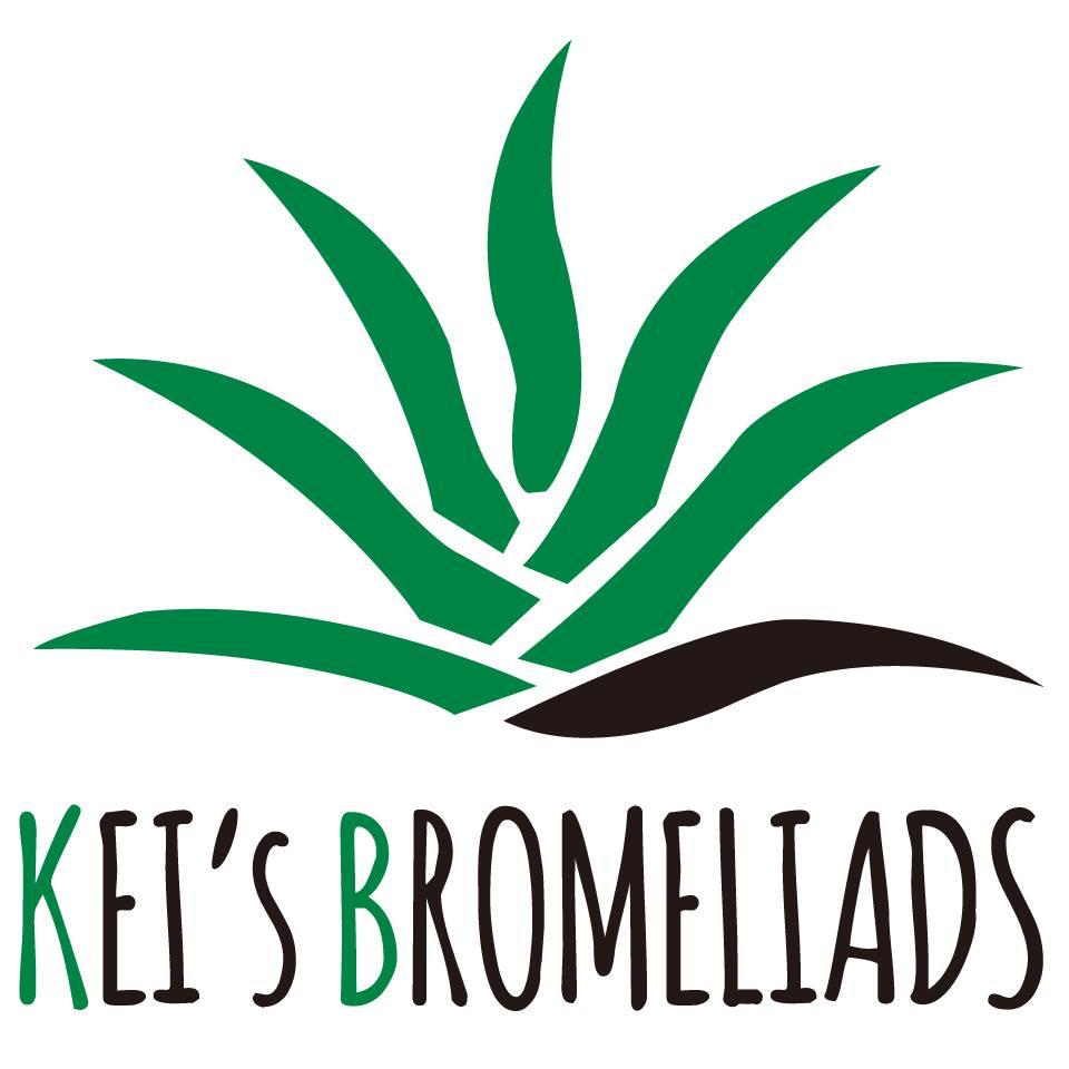 Kei's Bromeliads