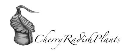 CherryRadishPlants